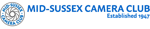 MSCC Banner Logo Correct Blue 500 100